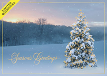 Morning Hush Holiday Cards